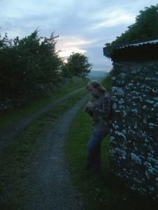 Ирландия, 2009